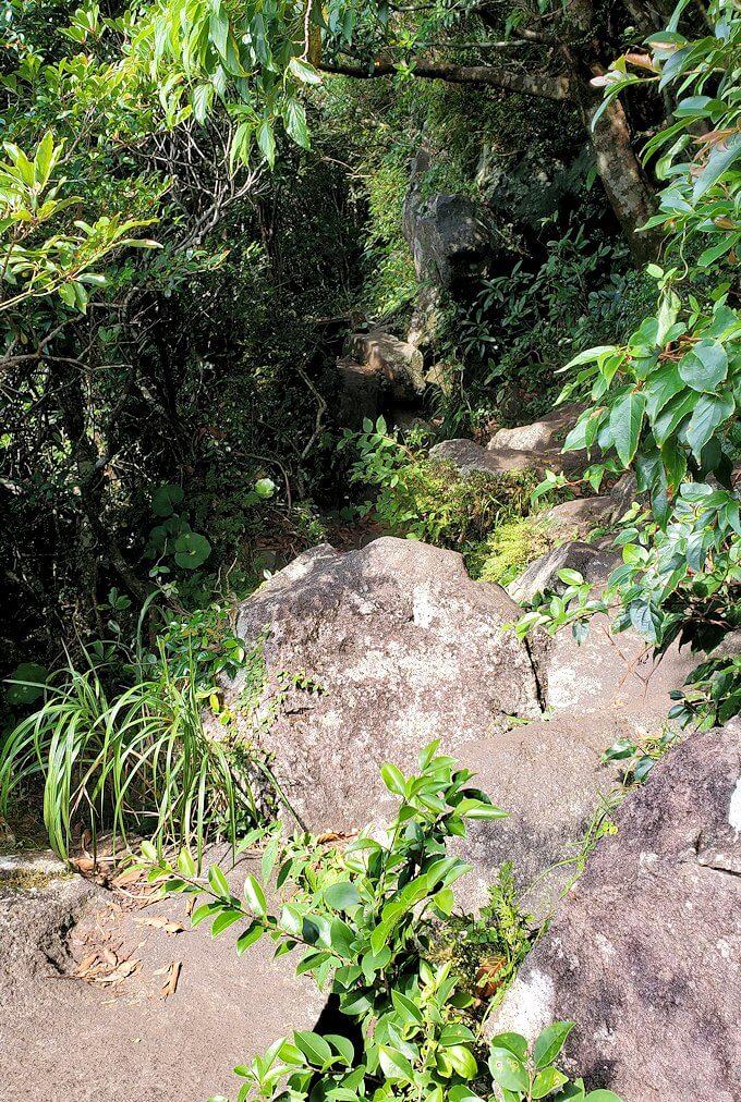 開聞岳登山道7合目近くにあった階段