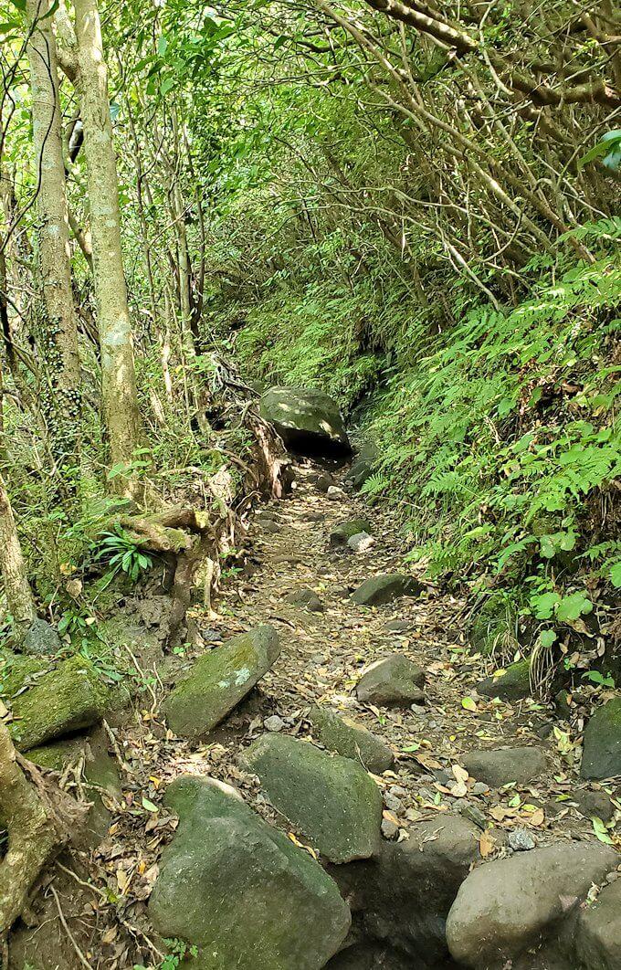 開聞岳8合目から登る1
