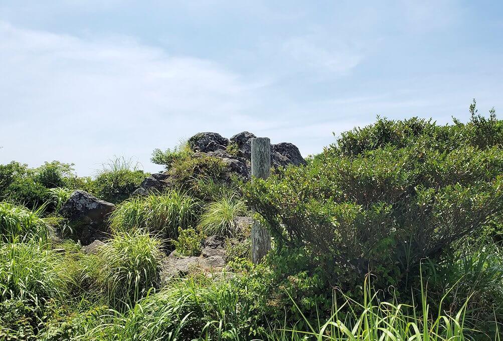 開聞岳頂の景色
