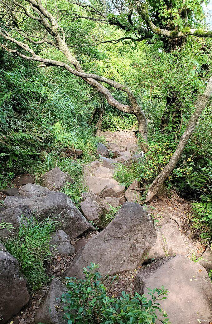 開聞岳を下山2