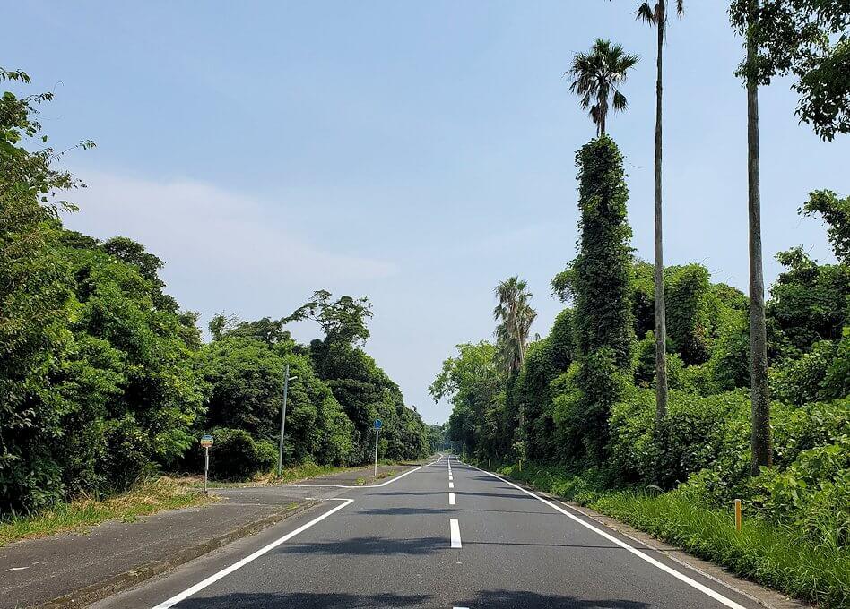 鹿児島ロマン街道を進む3