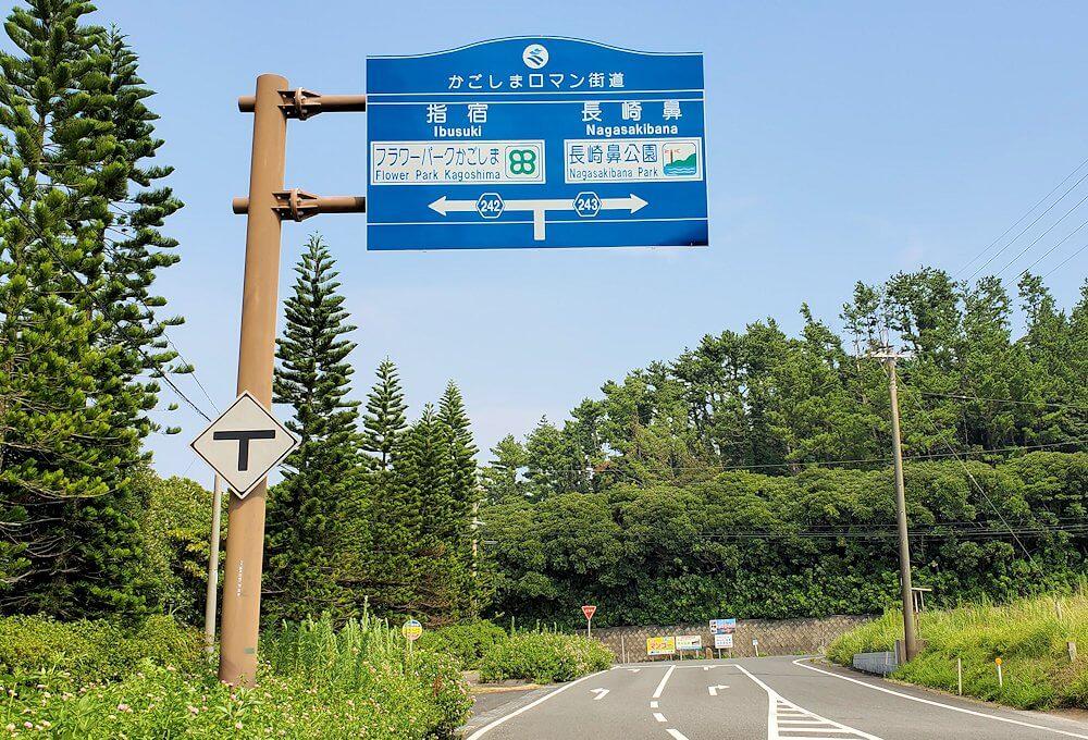 鹿児島で長崎鼻目指して進む2