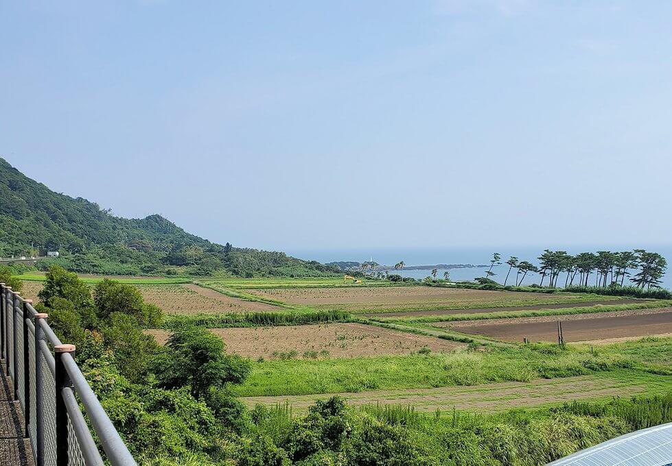 鹿児島で長崎鼻近くを進む