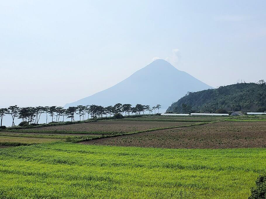 鹿児島で長崎鼻近くを進む2