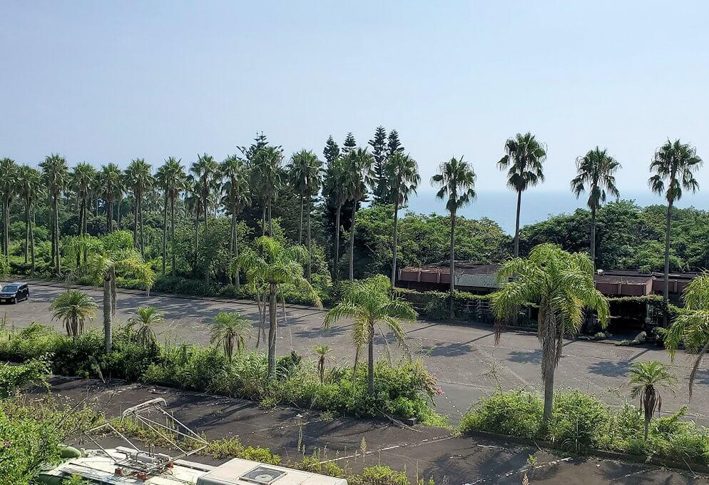 鹿児島で長崎鼻近くを進む3