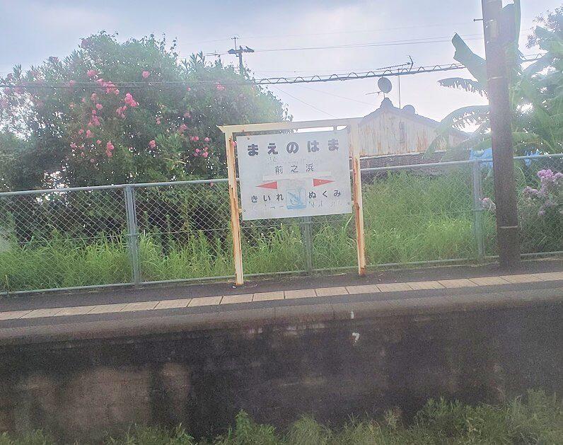 JR指宿枕崎線の車窓からの景色