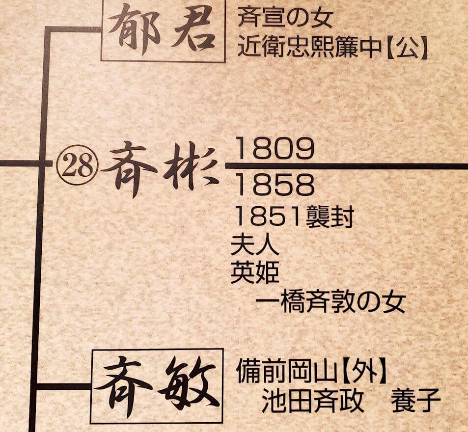 照国神社内資料館にある、島津家の系譜図の斉彬