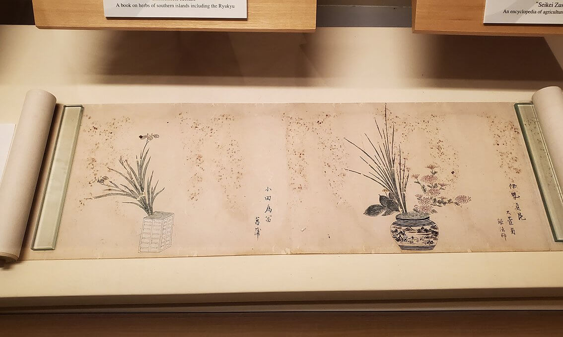 資料館にある島津重豪が造らせた絵画