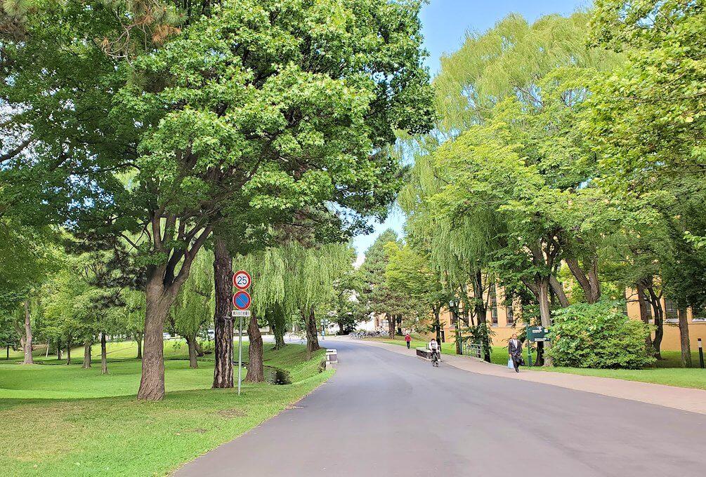 北海道大学構内の景観
