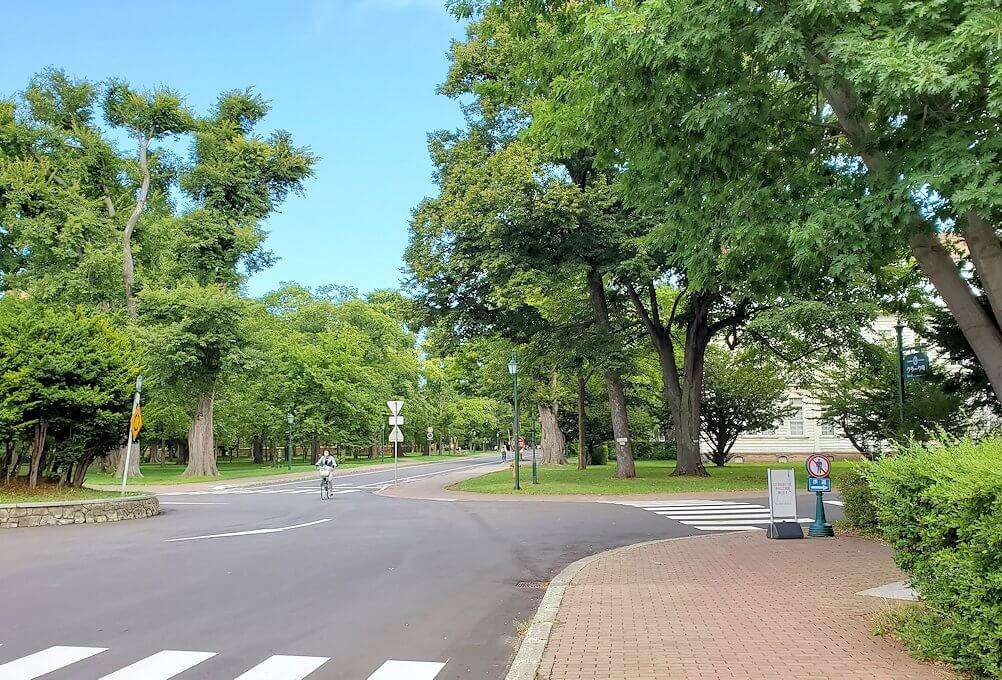 北海道大学構内の景観1