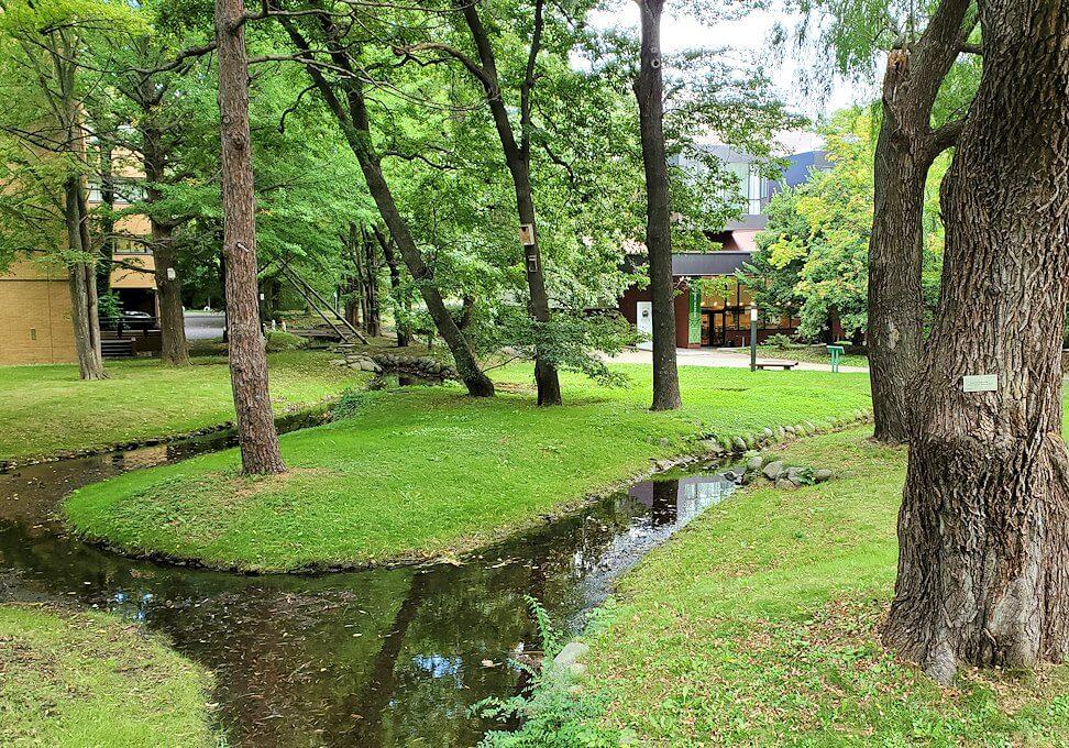 北海道大学構内の景観3
