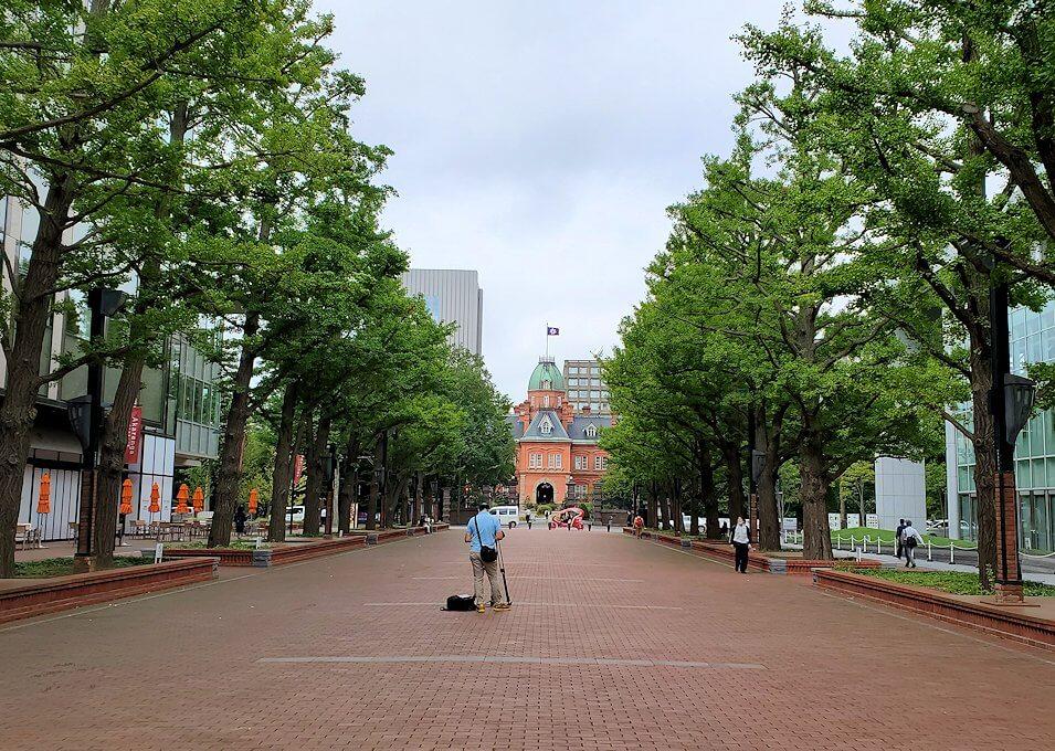 北海道庁前の延びる大通り