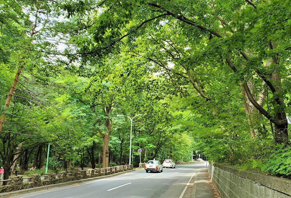 円山公園内を進む