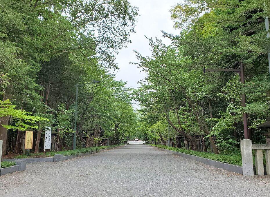 円山公園内にある北海道神社の参道