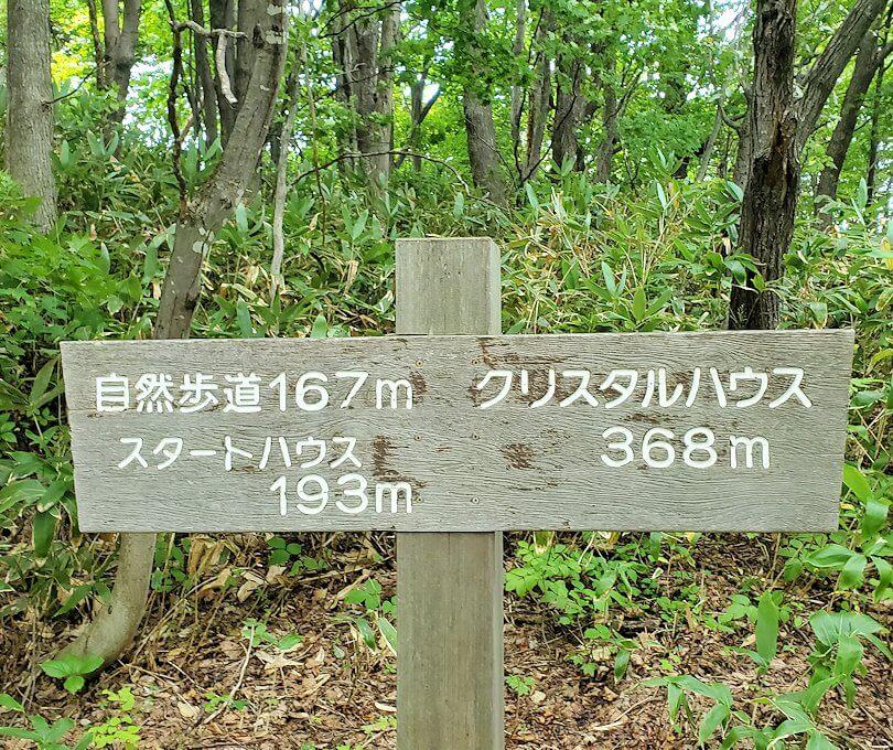 大倉山ジャンプ台を登る途中の展望台から更に登る