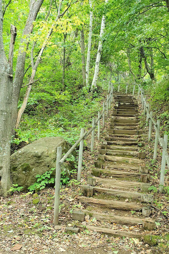 大倉山ジャンプ台を登る途中の展望台から更に登る1