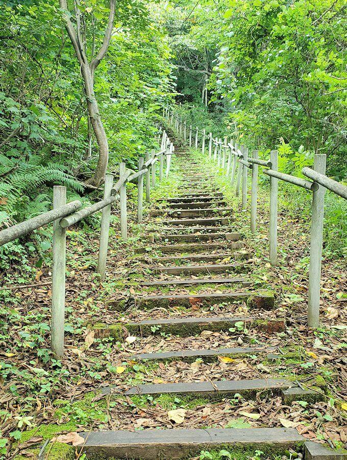 大倉山ジャンプ台を登る途中の展望台から更に登る2