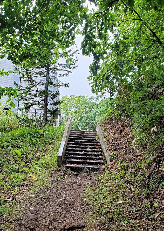大倉山ジャンプ台を登る途中の展望台から更に登る4