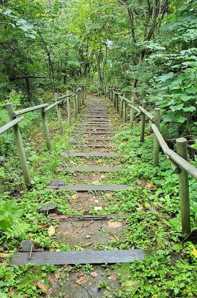 大倉山ジャンプ台から徒歩で降りる道