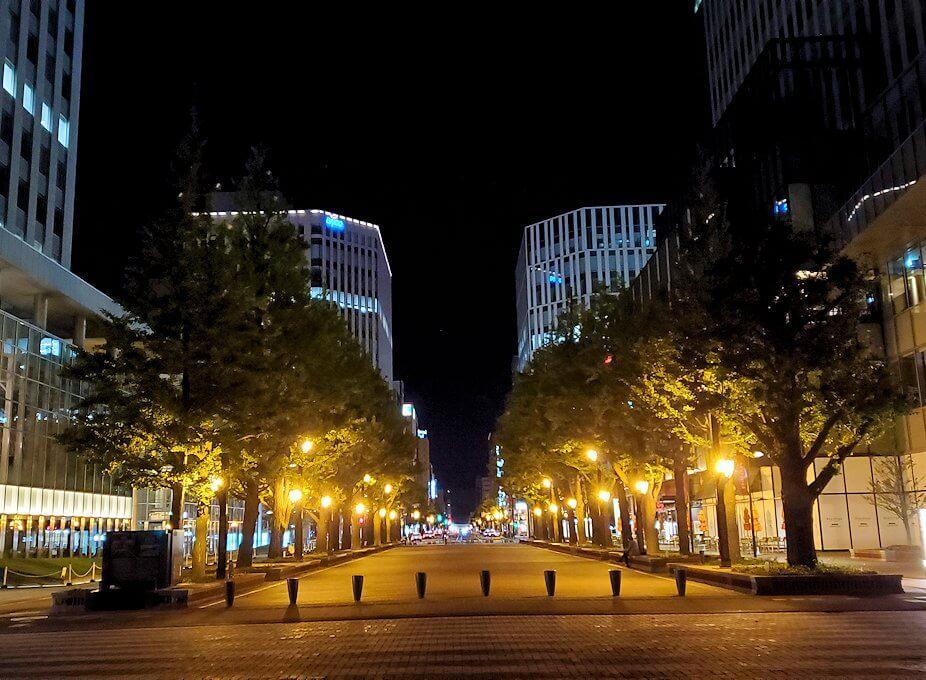 夜の北海道庁旧本庁舎前の通り