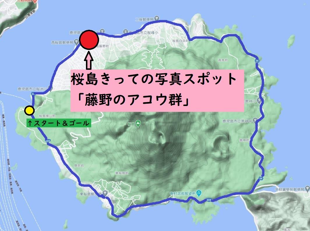 桜島サイクル地図:藤野のアコウ群