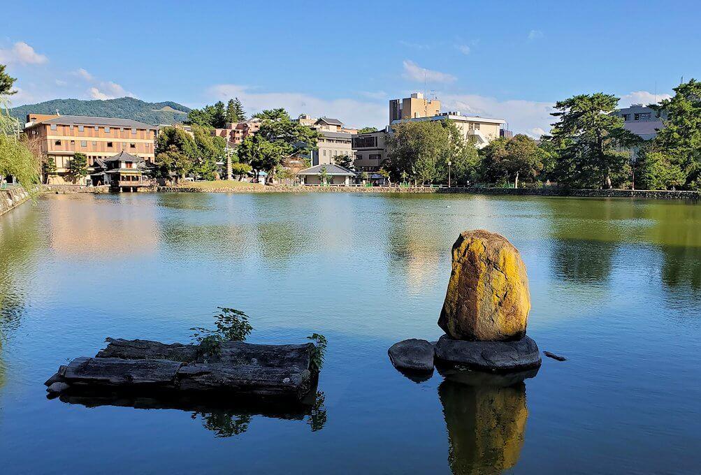 奈良公園の池