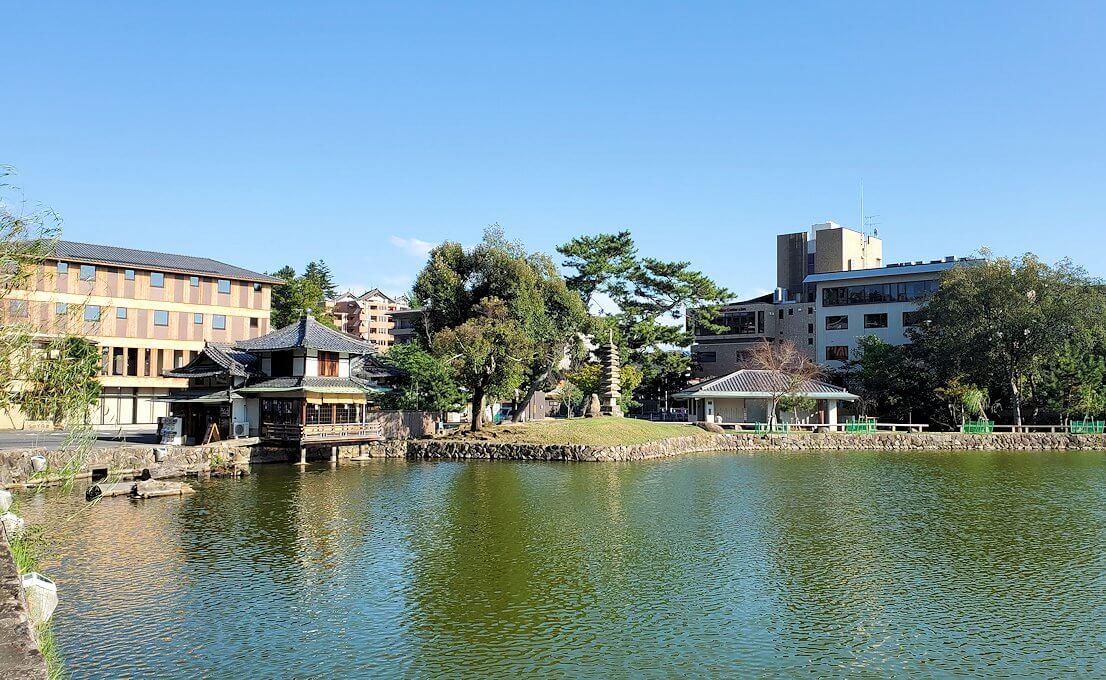 奈良公園の池2