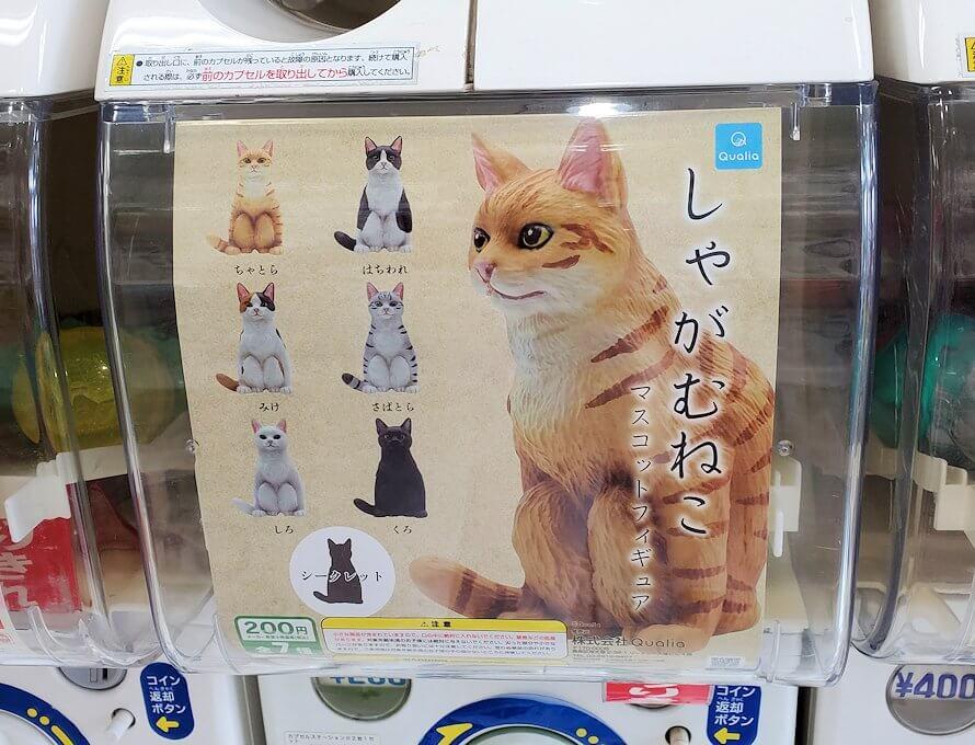 奈良「下御門商店街」にあったガチャガチャ店の猫ガチャマシーン