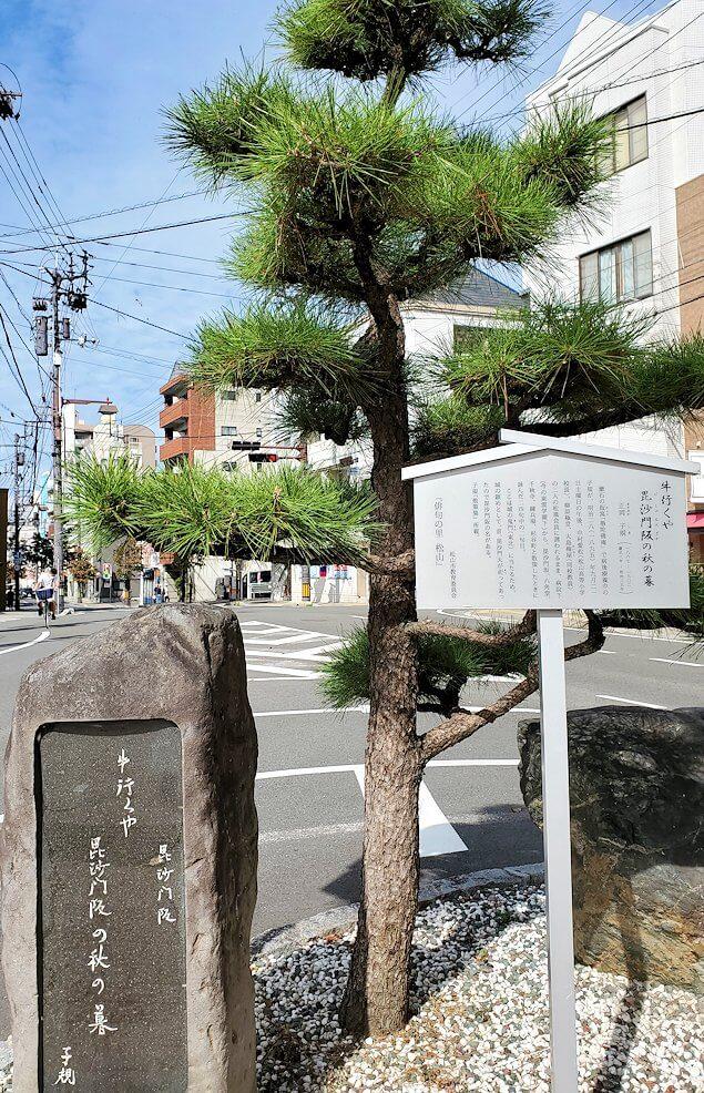 松山城本丸へと続く道へ繋がる階段の東雲神社付近