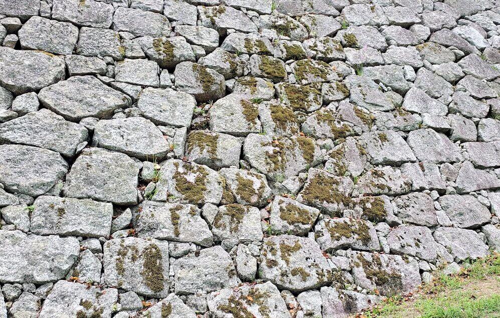 松山城本丸の石垣が見えてくる3