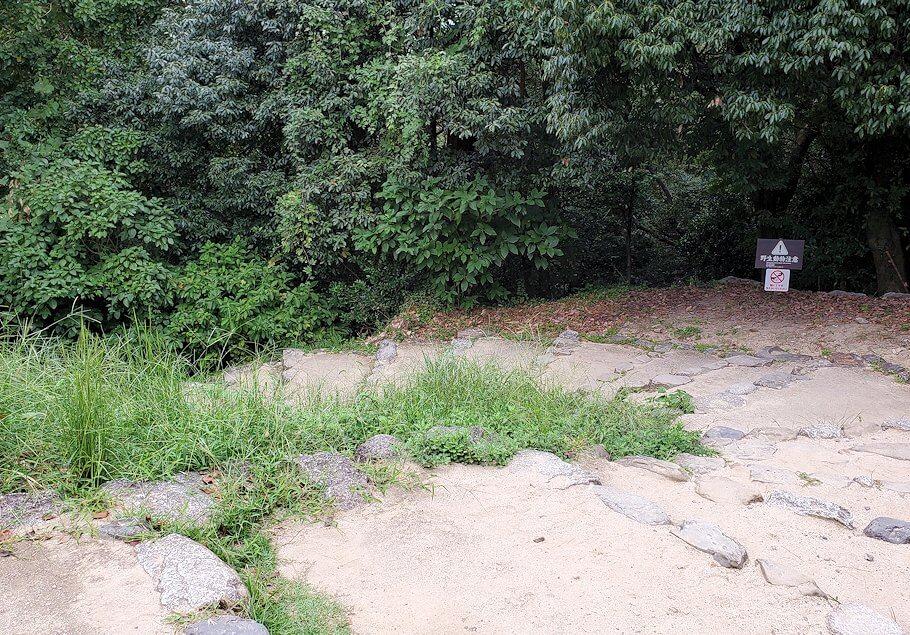 松山城「黒門口登城道ルート」を下る1