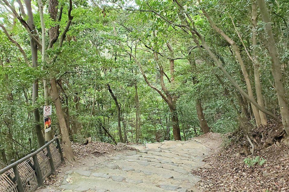 松山城「黒門口登城道ルート」を下る道