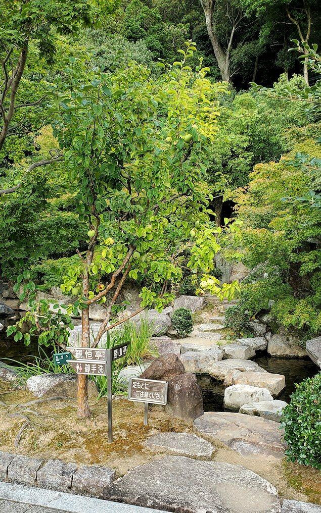 「二之丸史跡庭園」内の道