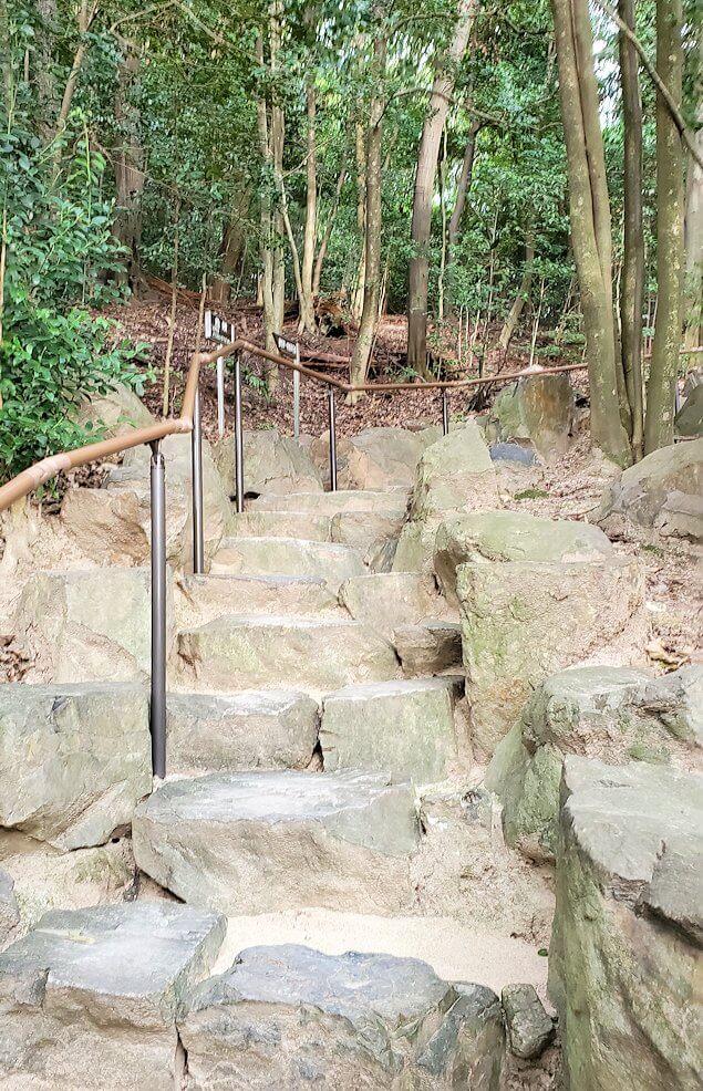 「二之丸史跡庭園」の奥へと進む1