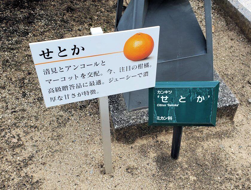 二之丸史跡庭園のせとかの看板