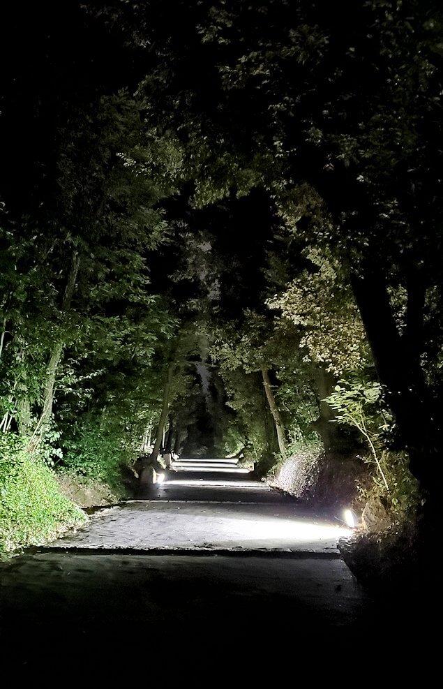暗い黒門口登城道を進む1