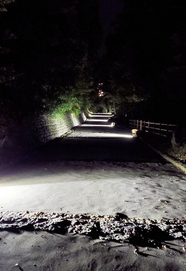 暗くなった松山城本丸を帰る2